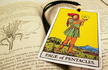 page of pentacles in a reading